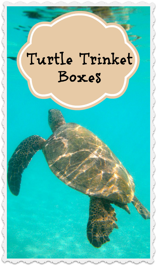 Turtle Trinket Boxes