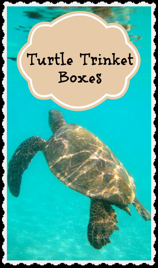 Turtle Trinket Boxes