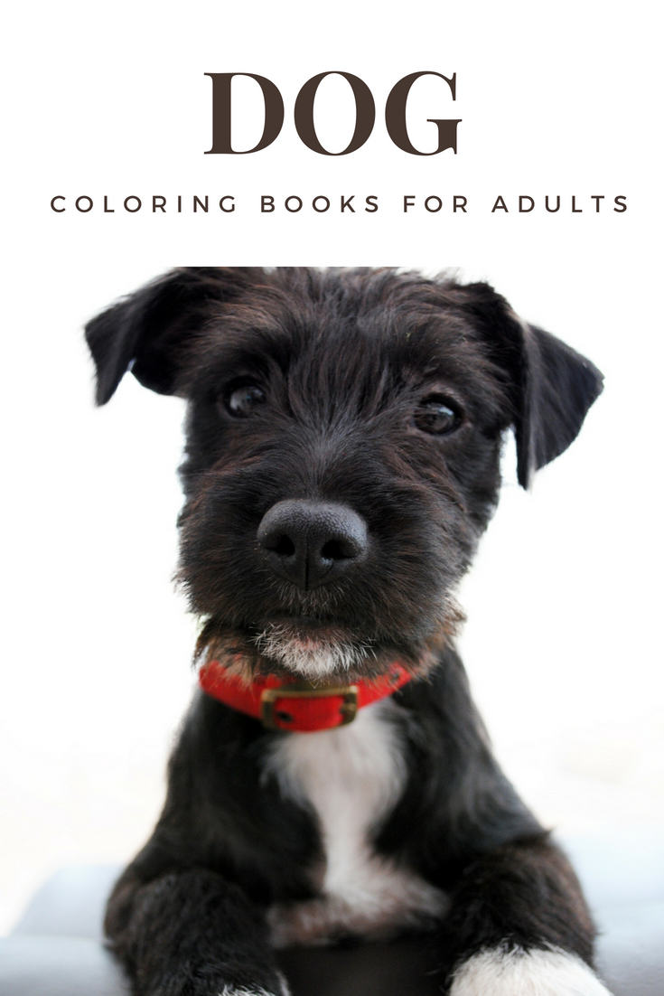 Delight Dog Lovers With Fantastic Dog Coloring Books For